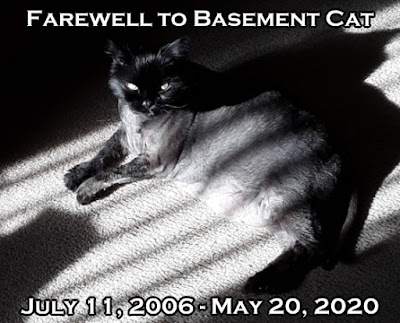 An emotional tribute to Basement Cat and some discussion on the problem of suffering in the world.