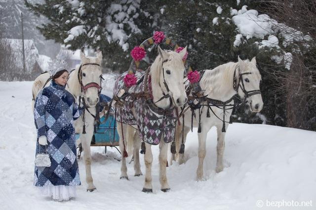 русская тройка лошадей фото