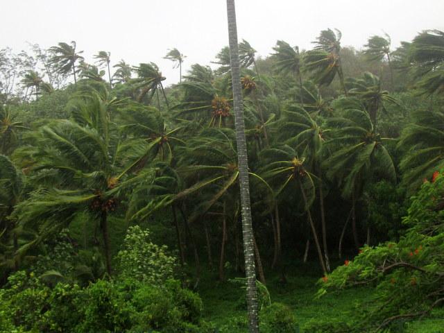 Pluies à Tahiti