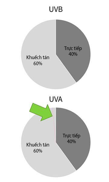 Tuy vậy, khi kết hợp với các yếu tố như khoảng cách với cửa sổ thì lượng UVA bạn nhận được cũng rất nhỏ