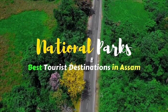National-Parks-Best-Tourist-Destinations-in-Assam