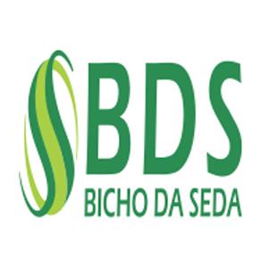 BDS Bicho da Seda Manaus Vagas de Emprego - Trabalhe Conosco