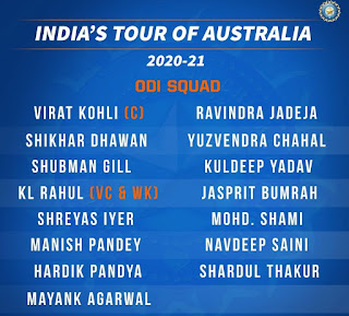 Cricket news. Site