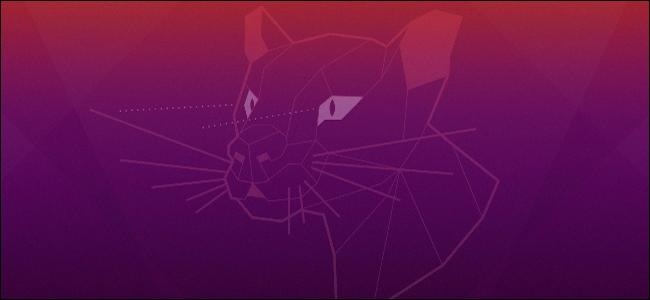 شعار Ubuntu's Focal Fossa من خلفية سطح المكتب.