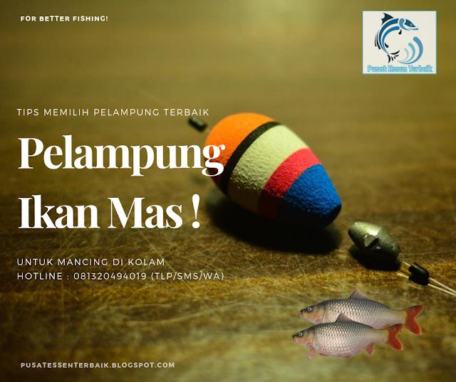 Memilih Pelampung Ikan Mas Terbaik Untuk Mancing Di Kolam - Pusat Essen Terbaik