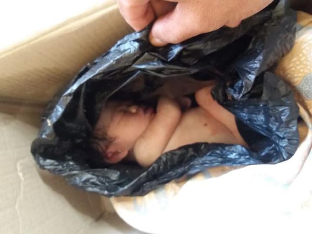 Innalillahi, Sesosok Mayat Bayi Perempuan Terbungkus Plastik di Temukan Tergantung di Pagar Rumah Warga