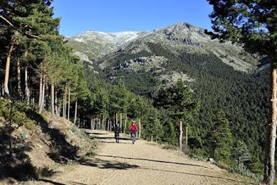 Practicar senderismo con escapadillas.com, aumenta la concentración.