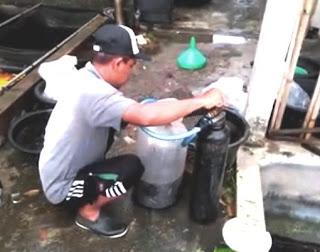 Metode Terbuka dan Tertutup Pengemasan Ikan Konsumsi