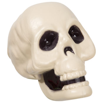 Dollar Tree Plastic Skull