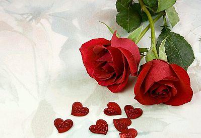 d895d9abb650c Banco de imagenes fotos gratis fotos de rosas rojas parte jpg 399x275 De rosas  rojas gratis