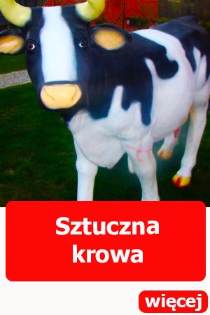 Sztuczna krowa, dmuchańce dla dzieci, atrakcje dla dorosłych, dmuchańce wrocław