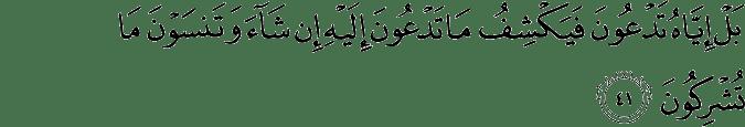 Surat Al-An'am Ayat 41