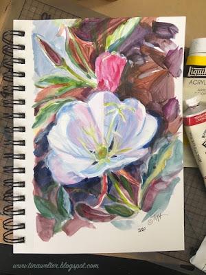 Tufted Evening Primrose, Sketchbook painting ©2020 Tina M.Welter