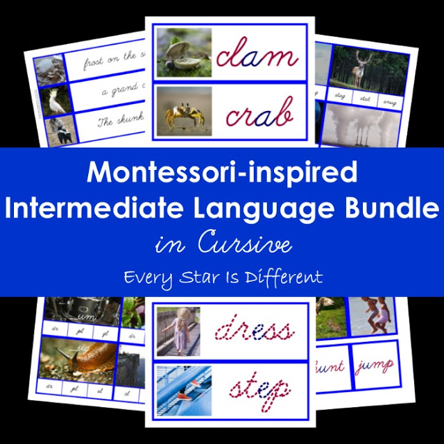 Cursive Montessori-inspired Intermediate Language Bundle (Blue Series/Consonant Blends)