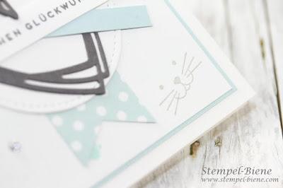 Geburtstagskarte mit Katzen; Katzenkarte; Matchthesketch; stampinup Geschenke; Vorteile Stampinup Demonstrator; stampinup Foxy Friends; stampinupklareaussage; stempel-biene