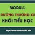MODULL BỒI DƯỠNG THƯỜNG XUYÊN KHỐI TIỂU HỌC (MODULL TH1 - TH45)
