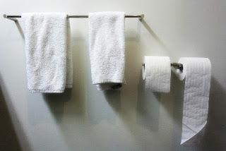 Clothe towel vs paper towel