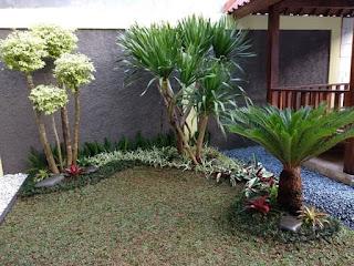 Jasa Taman Minimalis Murah