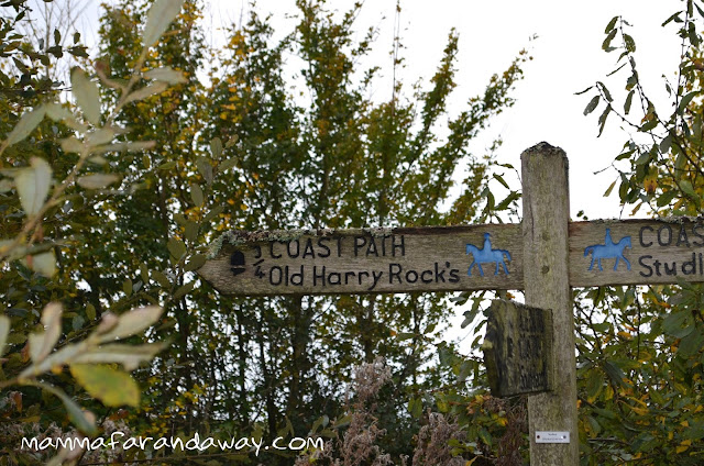 sentiero Old Harry Rocks