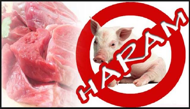 Simak 10 Alasan Ilmiah Kenapa Islam sangat Mengharamkan Daging Babi