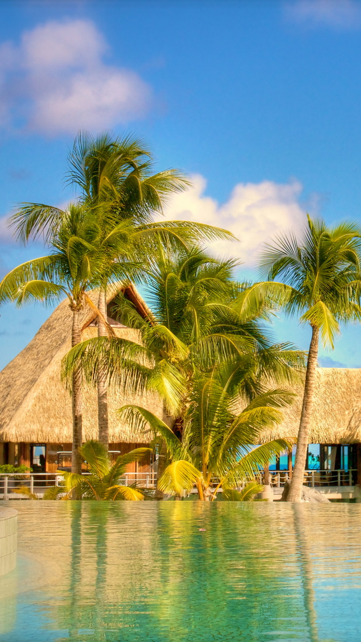 Tropical Beach Resort Mobile Wallpaper