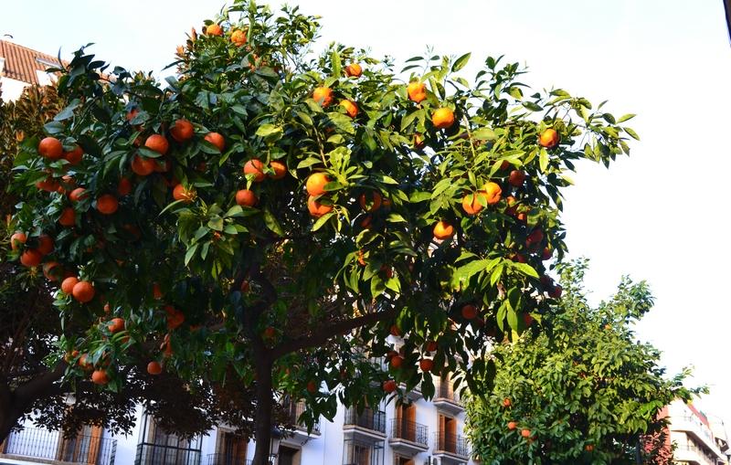 Huelva, Spain, Španělsko, Andalusie