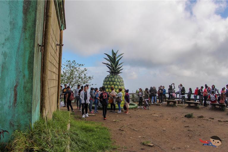 Huge pineapple in Peoples Park in the Sky