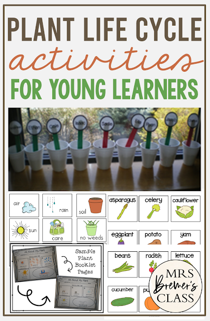 Plant Unit with activities to teach the life cycle of plants in Kindergarten and First Grade