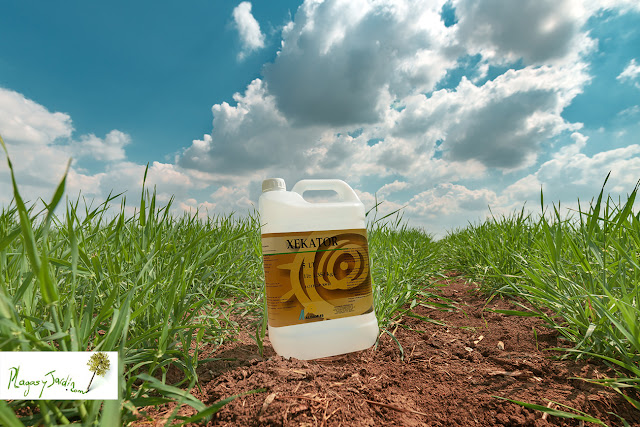 Xekator herbicida ecológico