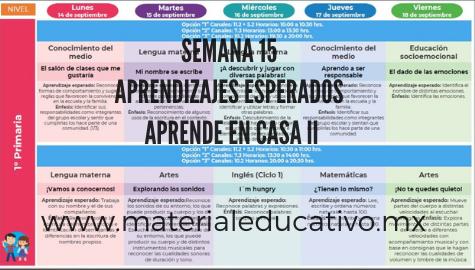 Semana 15 Aprende en Casa II Aprendizajes Esperados