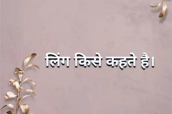लिंग Gender Hindi Grammar By Rexgin