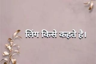 पुलिंग और स्त्रीलिंग शब्द हिंदी, जेंडर का अर्थ और परिभाषा, जेंडर की परिभाषा इन हिंदी, पुल्लिंग और स्त्रीलिंग के उदाहरण