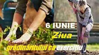 6 iunie: Ziua grădinăritului ca exercițiu
