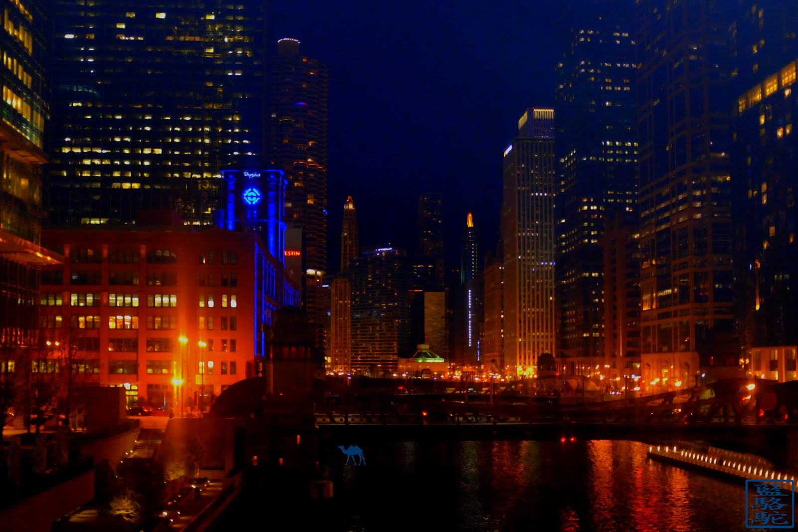 Le Chameau Bleu - Chicago by night