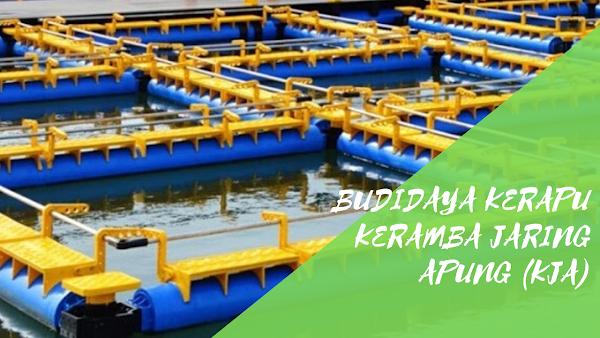 Sarana dan Prasarana Dalam Menunjang Keberhasilan Budidaya Kerapu Keramba Jaring Apung (KJA)