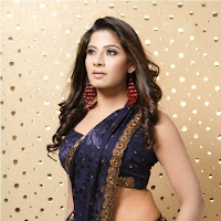 bonny an gorgeous Meenal spicy pics in black saree
