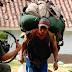 Capacitan en quechua a 400 porteadores del Camino Inca en Cusco