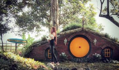 Wisata hits rabbit park di blitar, lokasi wisata instagramable rabbit park di blitar