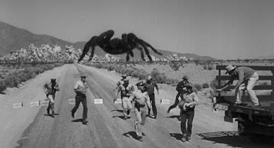 Tarantula on the Highway