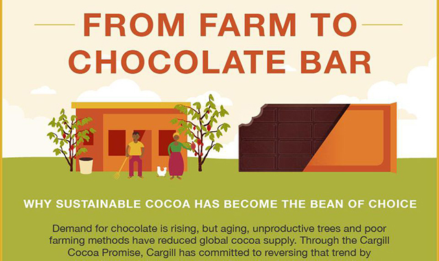 From Farm To Chocolate Bar