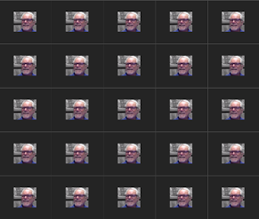 Screen with 25 photos of Dr. Z