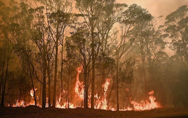 Austrália sofre com grandes queimadas e convoca 3 mil reservistas
