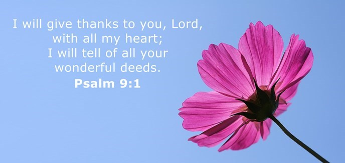 I will give thanks to you, Lord, with all my heart; I will tell of all your wonderful deeds.