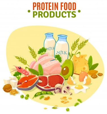 foods-that-contain-many-amino-acids