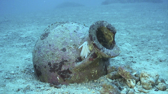 22 ancient Greek amphorae found off Albanian coast