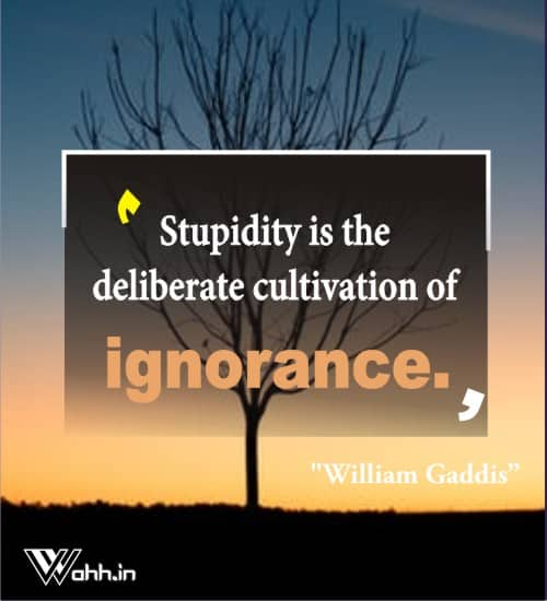 William-Gaddis-ignorance-quotes