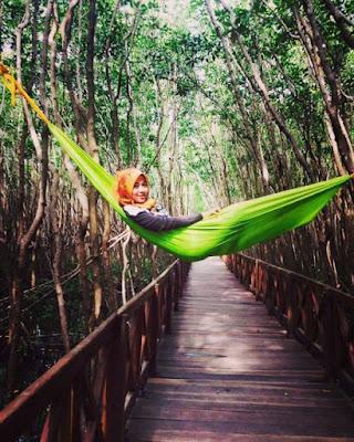 Tempat Wisata Terpopuler & Kekinian Kabupaten Sinjai yang Sayang Dilewatkan
