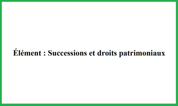 Successions%2Bet%2Bdroits%2Bpatrimoniaux%2BPDF