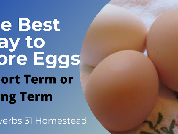 The Best Way to Store Eggs (Short and Long Term - with video)