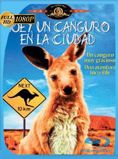 Joey (1997) HD [1080p] Latino [GoogleDrive] SilvestreHD